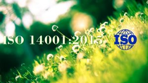 ISO 14001:2015 conversion